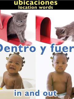 Dentro y fuera/In and Out