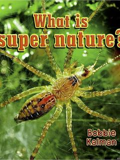What is super nature?