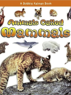 Animals Called Mammals