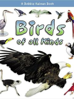 Birds of all Kinds