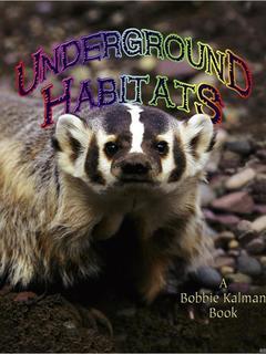 Underground Habitats