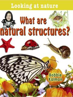 What are natural structures?