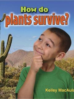 How do plants survive?