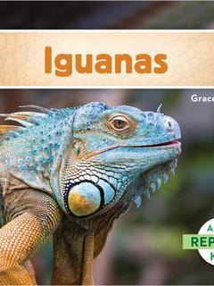 Iguanas (Spanish)