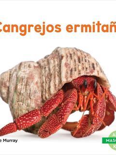 Cangrejos ermitanos