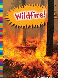 Wildfire!