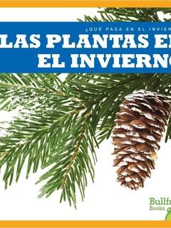 Las plantas en el invierno