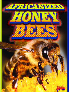 Africanized Honeybees