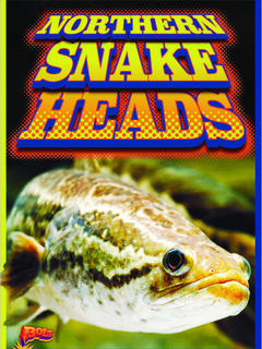 Northern Snakeheads
