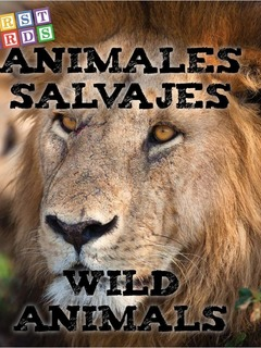 Animales salvajes / Wild Animals