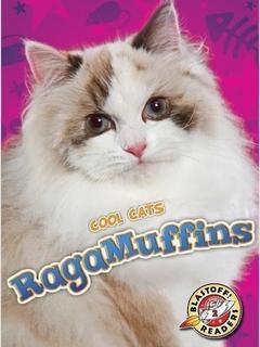 RagaMuffins