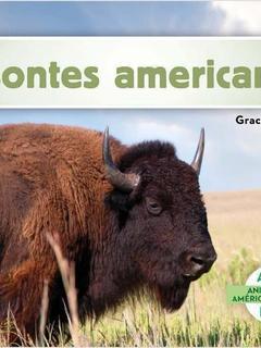 Bisontes americanos