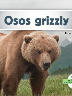 Osos grizzly