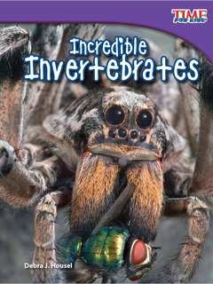 Incredible Invertebrates