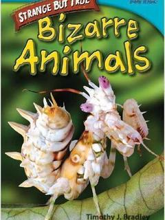 Strange but True: Bizarre Animals