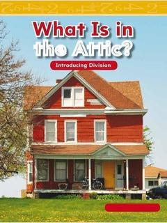 What Is in the Attic?