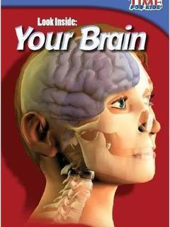 Look Inside: Your Brain