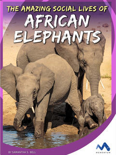 The Amazing Social Lives of African Elephants