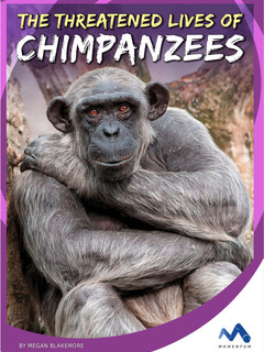 The Threatened Lives of Chimpanzees