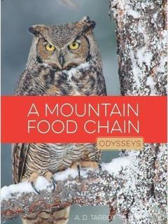 A Mountain Food Chain