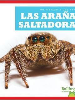 Las arañas saltadoras