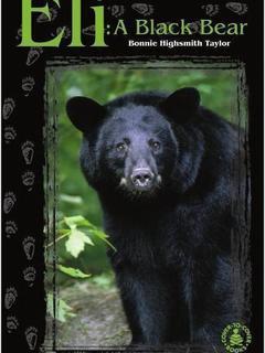 Eli: A Black Bear