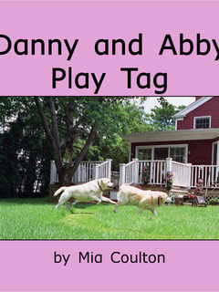 Danny and Abby Play Tag