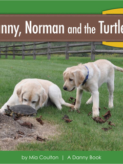 Danny, Norman and the Turtle