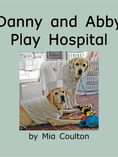 Danny and Abby Play Hospital