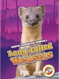 Long-tailed Weasels