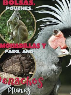 Bolsas, almohadillas y penachos/Pouches, Pads and Plumes