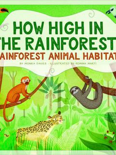 How High in the Rainforest? Rainforest Animal Habitats