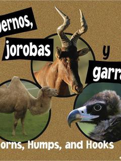 Cuernos, jorobas y garras/Horns, Humps, and Hooks