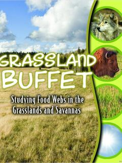 Grassland Buffet: Studying Food Webs in the Grasslands and Savannahs
