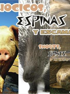 Hocicos, espinas y escamas/Snouts, Spines, and Scutes