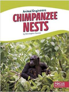 Chimpanzee Nests