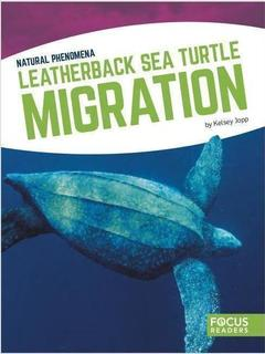 Leatherback Sea Turtle Migration