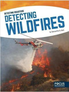 Detecting Wildfires