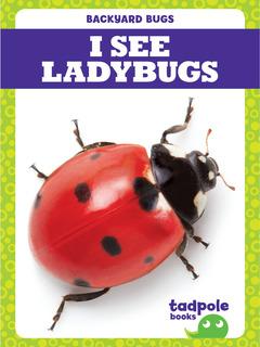 I See Ladybugs