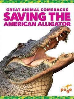 Saving the American Alligator