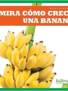 Mira cómo crece una banana