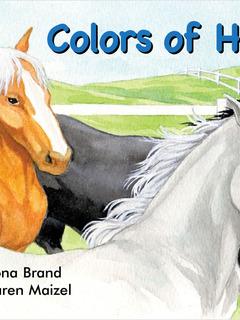 Colors of Horses