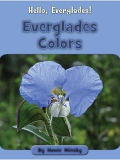 Everglades Colors
