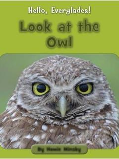 Look at the Owl