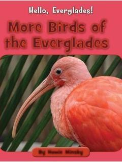 More Birds of the Everglades