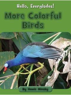 More Colorful Birds