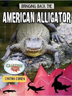 Bringing Back the American Alligator