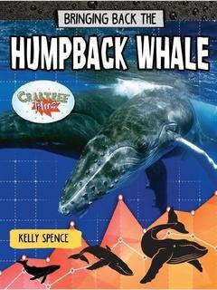 Bringing Back the Humpback Whale