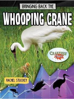 Bringing Back the Whooping Crane