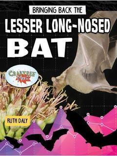 Bringing Back the Lesser Long-Nosed Bat